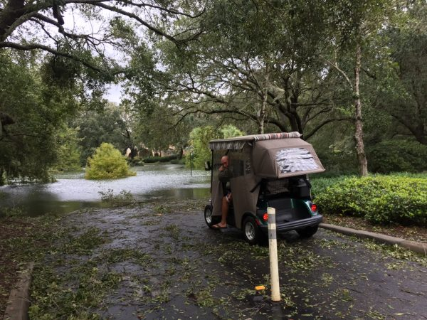 Golf cart path covered in foliage and water